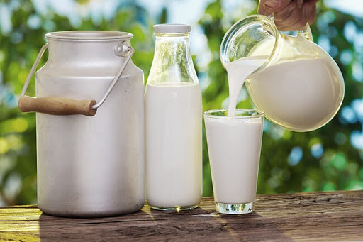 Uống sữa bò tươi chưa qua xử lý có thể là nguyên nhân gây bệnh lao ruột