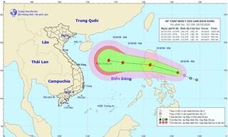 Xuất hiện áp thấp nhiệt đới trên Biển Đông có thể thành bão