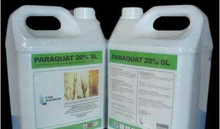 3 người nhập viện cấp cứu do bị ngộ độc nặng thuốc diệt cỏ Paraquat