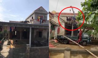 Pha 'hộ tống' 2 chú trâu trên mái nhà xuống đất sau lũ khiến dân mạng bật cười