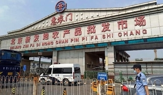 Trung Quốc công bố nguồn gốc ổ dịch Covid-19 ở chợ Tân Phát Địa
