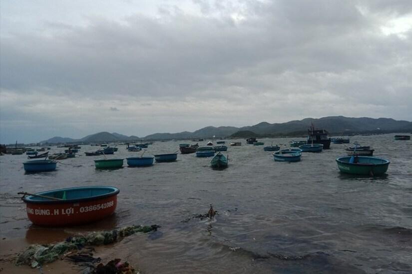 Ứng phó bão số 10, Phú Yên cấm biển từ 9h ngày 4/11