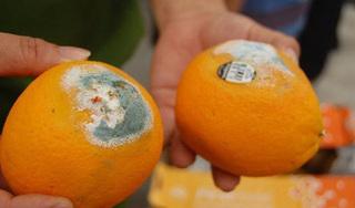 Hai vợ chồng khóc ân hận khi biết mình mắc ung thư gan từ thói quen ăn hoa quả