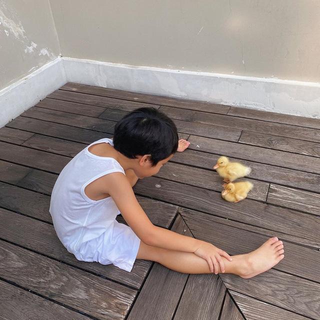 Bất ngờ với vóc dáng của cậu nhóc nhà Tăng Thanh Hà, mới 5 tuổi mà đã phổng phao, đáng yêu thế này (tối)