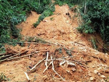 Cận cảnh sạt lở hiếm thấy tàn phá miền núi Bình Định