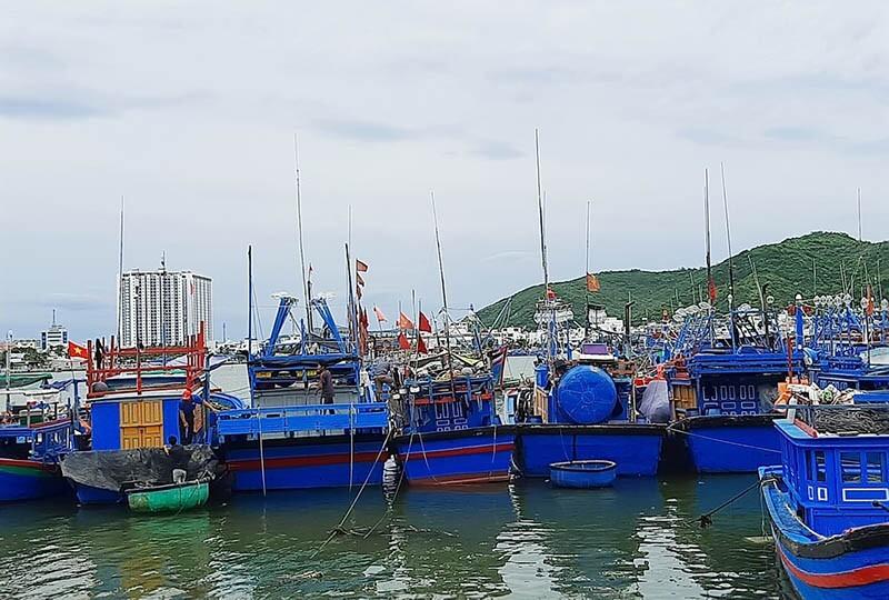 Khánh Hòa và Phú Yên sơ tán dân tránh bão số 12