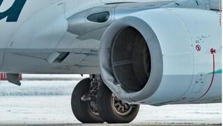 Máy bay của hãng Alaska đâm chết gấu nâu khi hạ cánh