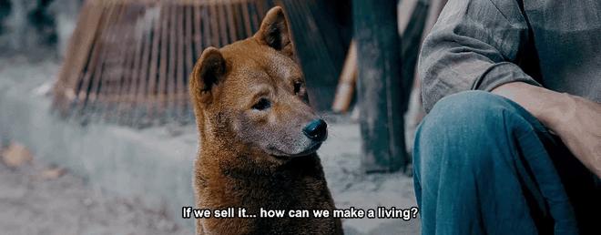 Phim điện ảnh 'Cậu Vàng' vừa tung teaser trailer đã lại gây tranh cãi