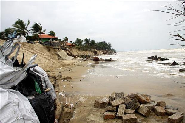 Một tuần sau bão số 13, bờ biển Hội An vẫn tan hoang, sạt lở gần 4km
