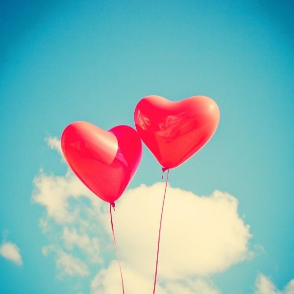 Hạnh phúc là cho và sống vì người khác