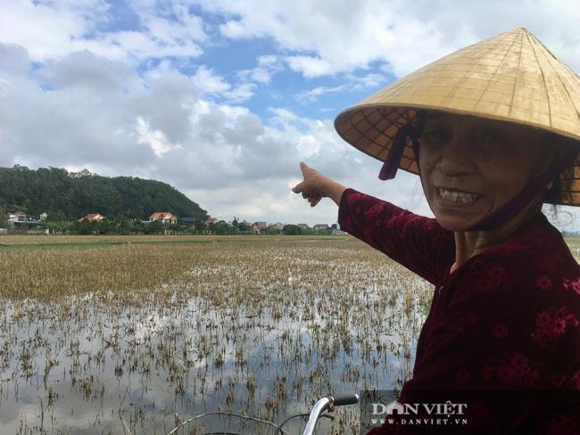 Hàng xóm kể chuyện Hoa hậu Đỗ Thị Hà từ nhỏ ra đồng, cấy gặt rất giỏi