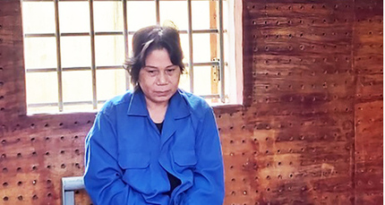 Nguyên nhân vụ mẹ thuê người bắt cóc con gái khiến con rể đâm chết người