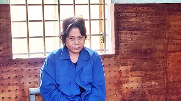 Mâu thuẫn tài sản, người mẹ thuê người bắt cóc con gái