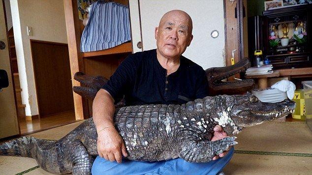 Người đàn ông nuôi cá sấu khổng lồ như thú cưng gần 40 năm.9