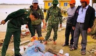 Đi đánh cá đêm, hai anh em ruột mất tích trên sông Thu Bồn