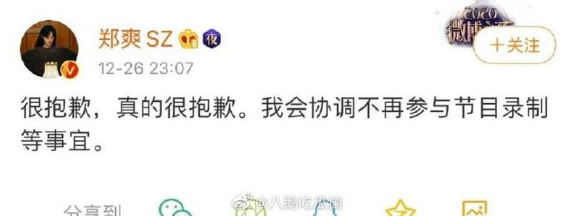 Trịnh Sảng tiếp tục 'vạ miệng', xin rút khỏi show truyền hình vì kém duyên