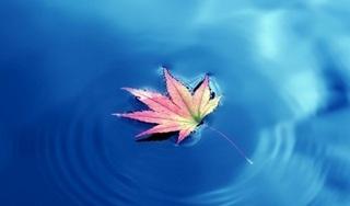Thay đổi bản thân không khó nếu biết bỏ 4 điều đơn giản này