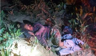 Người đàn ông bất tỉnh trong rừng nghi bị voi quật