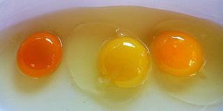 Muốn thấy sự khác biệt về dinh dưỡng hãy nhìn vào lòng đỏ trứng, màu càng đậm càng chứng tỏ điều này