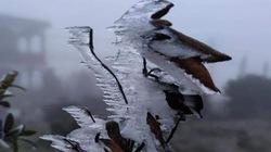 Nhiệt độ giảm sâu, băng giá phủ trắng Mẫu Sơn
