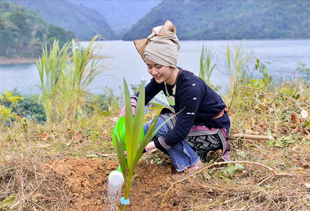 Bất chấp thời tiết lạnh 7 độ C, top 10 Miss Tourism Việt Nam lên núi trồng cây