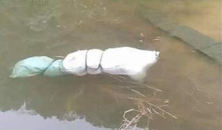 NÓNG: Bàng hoàng phát hiện thi thể người phụ nữ bọc trong túi ni lông dưới hồ