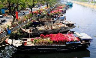 TP.HCM: Chợ hoa