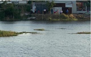 Bà Rịa - Vũng Tàu: 2 con cá sấu xuất hiện ở hồ nước trong khu dân cư