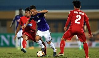Chính thức hoãn trận Hải Phòng - Hà Nội FC vì Covid-19