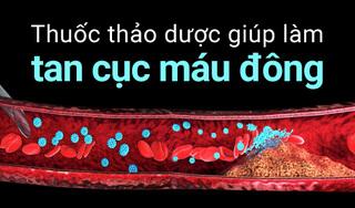 Thuốc thảo dược giúp làm tan cục máu đông phòng ngừa đột quỵ