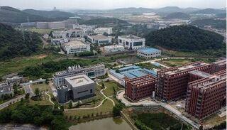 Chuyên gia WHO lên tiếng sau khi đến thăm Viện virus học Vũ Hán