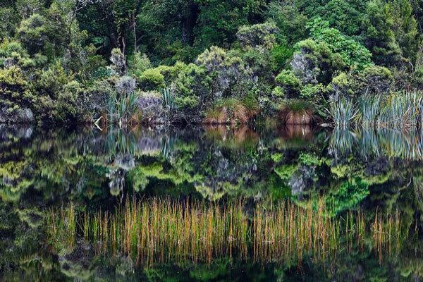 Bộ sưu tập ảnh thiên nhiên kỳ vỹ đến choáng ngợp