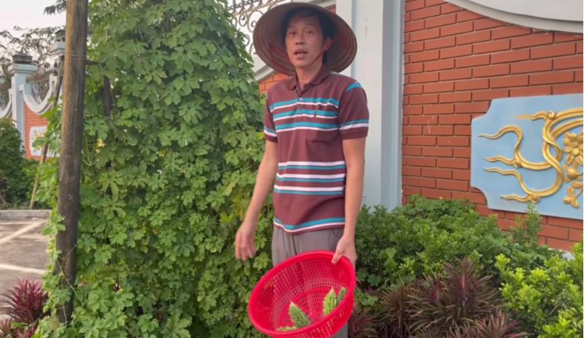 Nghệ sĩ Việt 'đổ bộ' Youtube, Tiktok vì ảnh hưởng của dịch Covid-19?