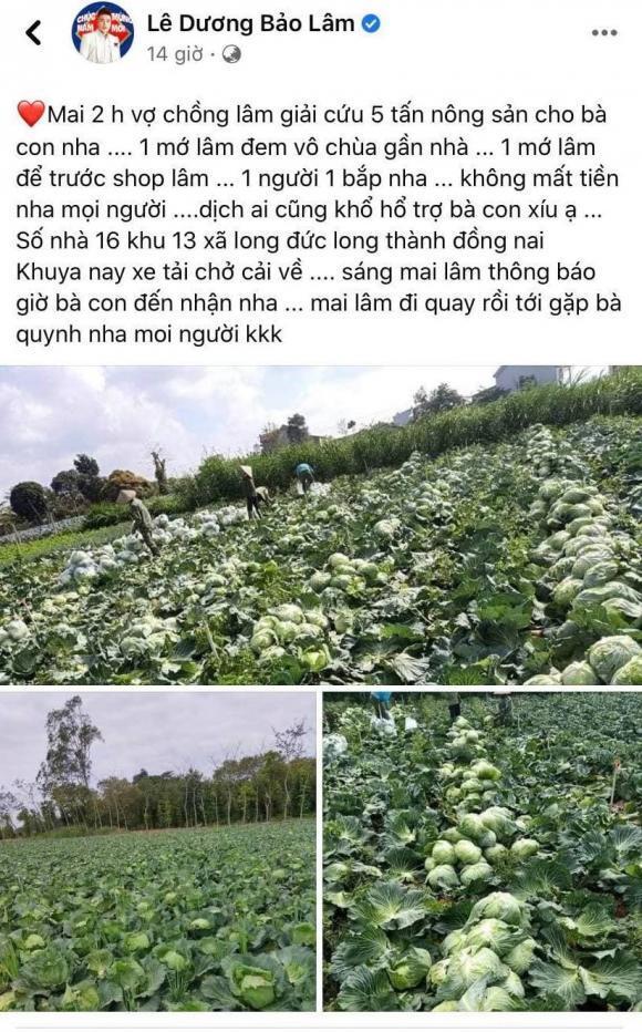 Lê Dương Bảo Lâm 'giải cứu' 5 tấn nông sản cho người dân Hải Dương
