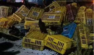 Xe tải chở gà lật trên đường Hồ Chí Minh, tài xế và phụ xe tử vong