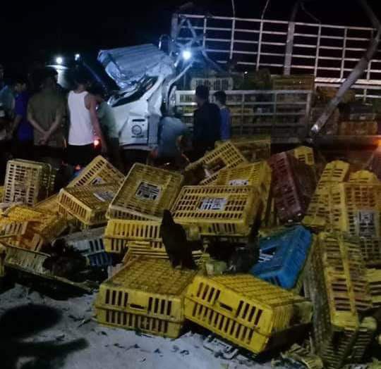 Xe tải chở gà bị lật trên đường Hồ Chí Minh, tài xế và phụ xe tử vong