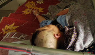 Hà Tĩnh: Một người phụ nữ bị hành hung khi đi làm vườn