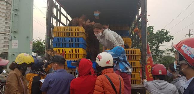 Các chuyến xe giải cứu gà Chí Linh (Hải Dương) rất đắt khách.