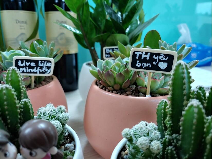Ngày Quốc tế Hạnh phúc tại Top 6 nơi làm việc tốt nhất Việt Nam