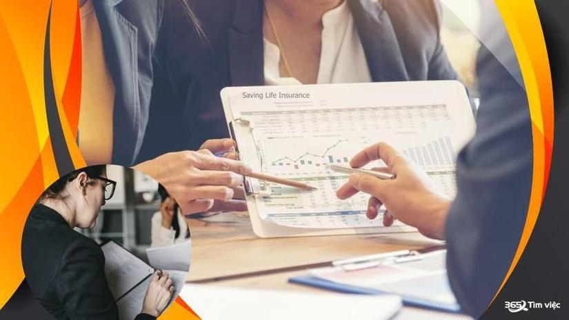 Timviec365.vn giúp tạo mẫu CV ấn tượng và tìm việc làm bảo hiểm hiệu quả
