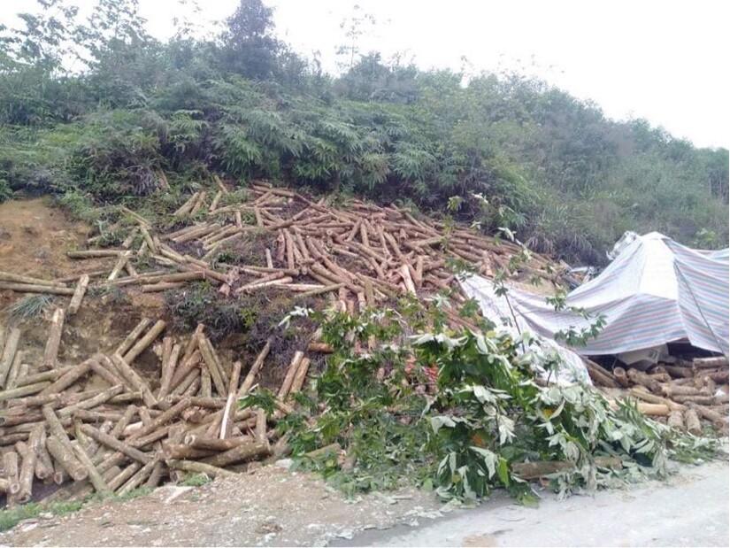 7 người thiệt mạng trong vụ tai nạn thảm khốc ở Thanh Hóa đều ngồi trên cabin xe tải