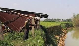 Quảng Nam: Sạt lở bờ sông đe dọa diện tích hoa màu