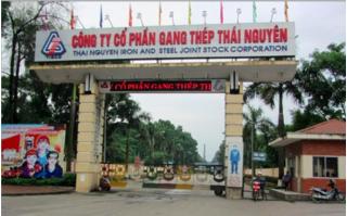 Hãng luật đưa ra cơ sở chống lại tập đoàn ở Trung Quốc vụ Gang thép Thái Nguyên