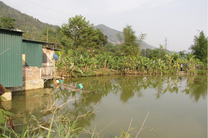 Tắm ao, 3 học sinh ở Sơn La chết đuối thương tâm
