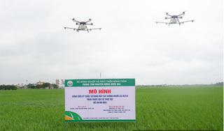 Nam Định: Đã mắt xem dàn máy bay không người lái của quân đội phun thuốc trừ sâu hại lúa