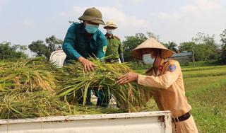 Công an lội ruộng gặt lúa giúp người dân F1, F2 đang phải đi cách ly vì dịch COVID-19