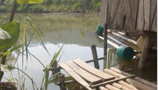Điện Biên: 2 trẻ mầm non đuối nước thương tâm tại ao của gia đình