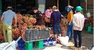 Xử phạt 1 người đăng tải thông tin vải thiều ở Bắc Giang bị ép giá