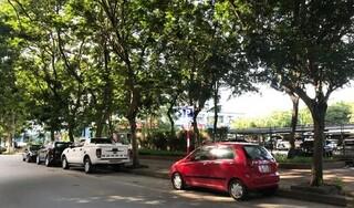 Hà Nội: Người dân 'bỗng dưng' mất phí gửi xe dưới lòng đường có vạch kẻ được dừng đỗ, chính quyền nói gì?