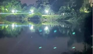 Phú Thọ: Phó Trưởng Công an và Trưởng phòng Văn hóa huyện đuối nước, tử vong